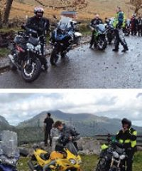 New Style Motorcycle Tours & Training